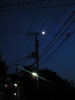 夜空に月を愛でる